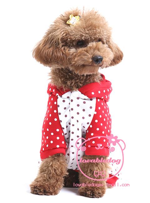 宠物服装:狗狗草莓冬装