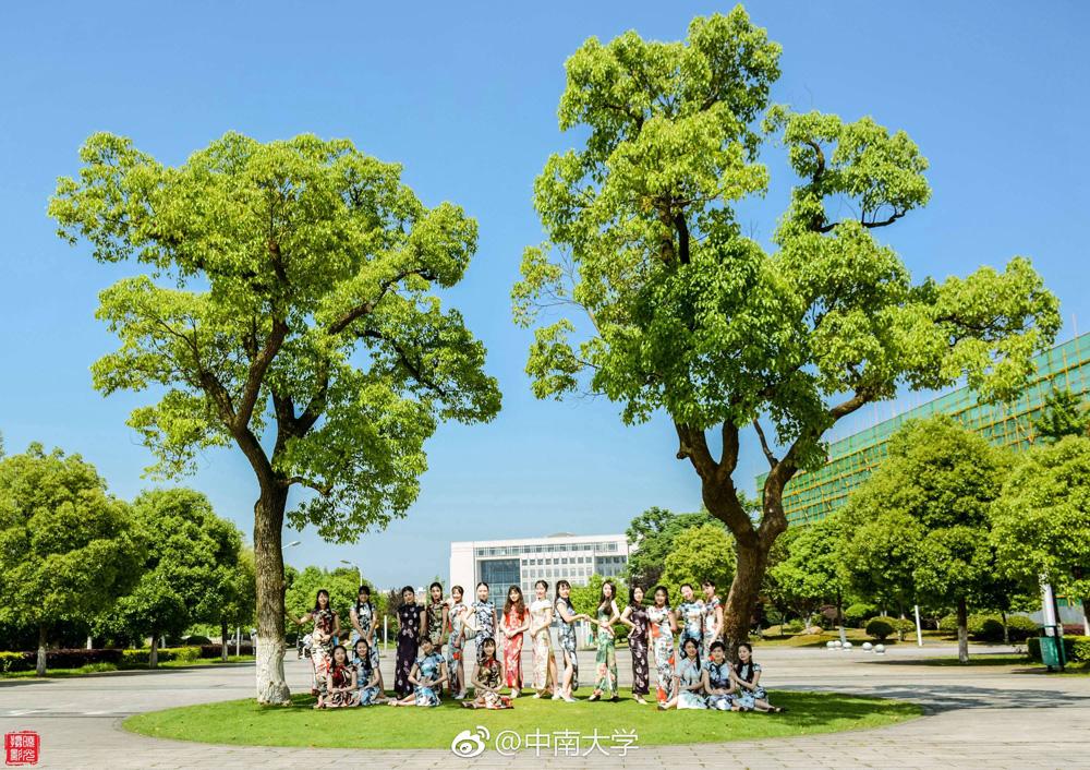 又是一年毕业季 中南大学旗袍毕业照走红网络
