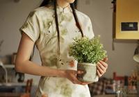 棉麻旗袍的几点小常识 适用所有棉麻衣物
